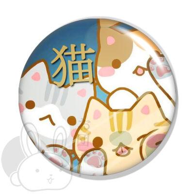 Cica kitűző 2