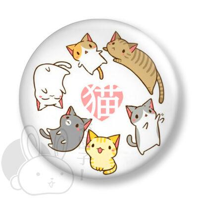 Cica kitűző 1
