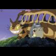 Totoro avar karkötő