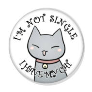 I'm not single, I have my cat kitűző 1