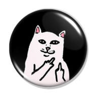 Beint a cica kitűző