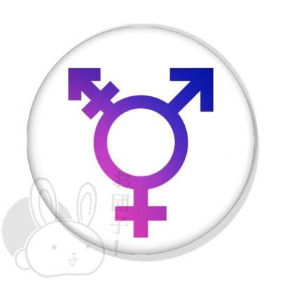 Gender kitűző 1